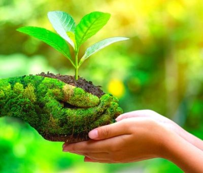 How To Have An Eco-friendly Business