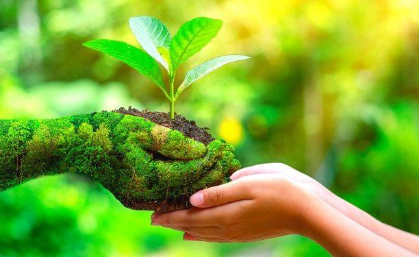 Eco-Friendly-Business-Plan